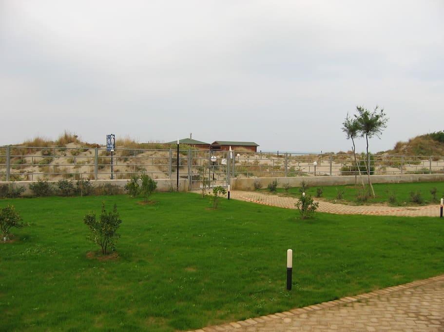 Appartam sulla spiaggia tirrenia appartamenti in for Ascensore casa sulla spiaggia