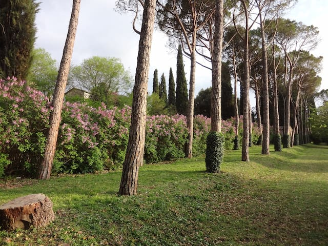 Villa Negri-Arnoldi alla Bianca - Campello Sul Clitunno - Villa