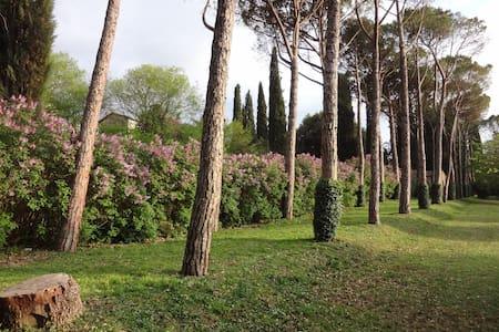 Villa Negri-Arnoldi alla Bianca - Campello Sul Clitunno - วิลล่า