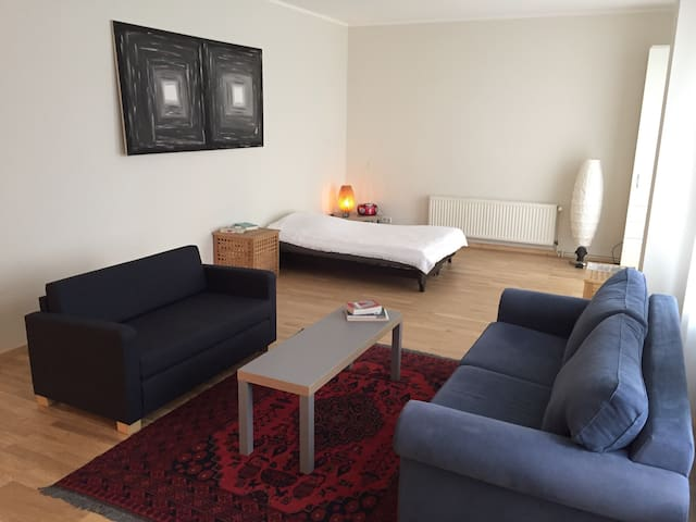 Hell, groß (60m²), gemütlich, zentral, Terrasse - Berlin - Apartment