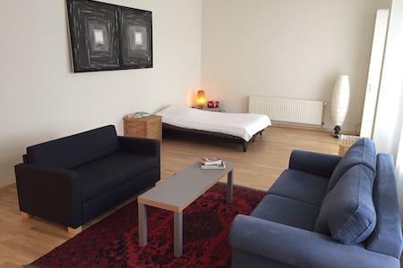 Hell, groß (60m²), gemütlich, zentral, Terrasse - Berlin - Wohnung