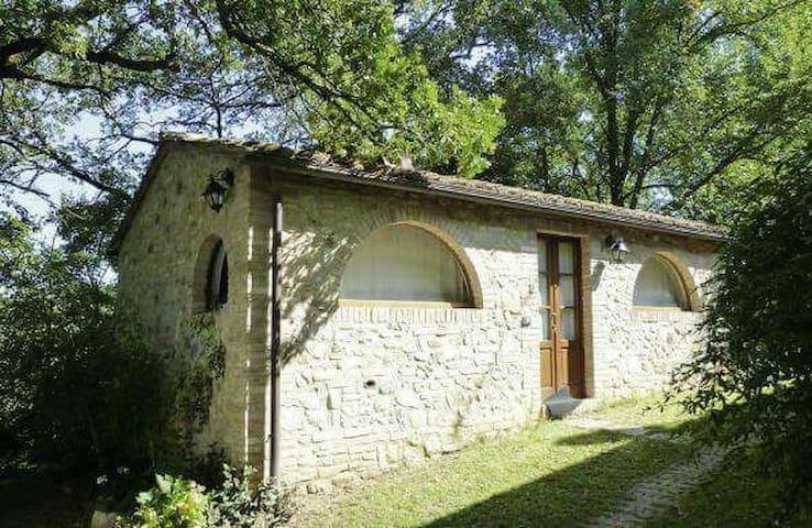 Affascinante appartamento - Castelnuovo Berardenga - Casa