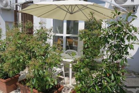 Loft with garden near Universities