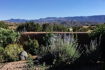 front patio viewing the Santa Fe Forest