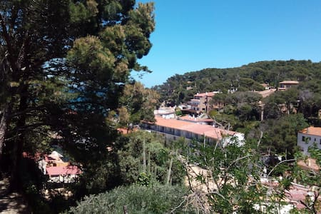 House 500m from the beach (3) - Sa Riera