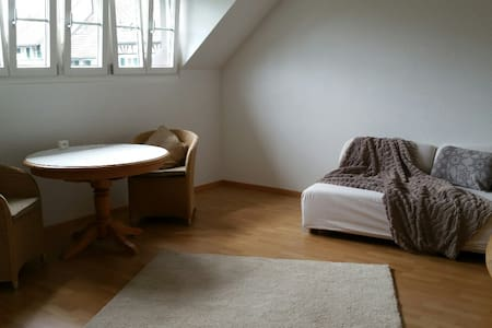 modern cozy furnished studio with own bathroom - Hochfelden