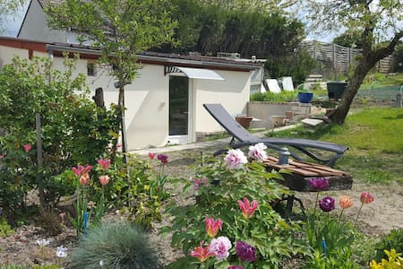 Ferte st aubin, la Motte Beuveron, Loire Valley - La Ferté-Saint-Aubin - Bed & Breakfast