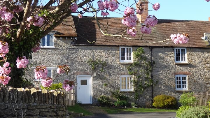 Sycamores Cottage in Dorset