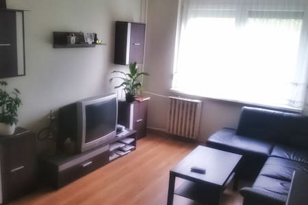 Kiadó másfél szoba zugló határán - Budapest - Lakás