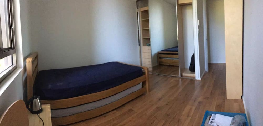 quite single room with friendly roommate