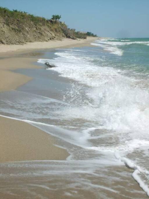 Area vigne sul mare e passeggiata
