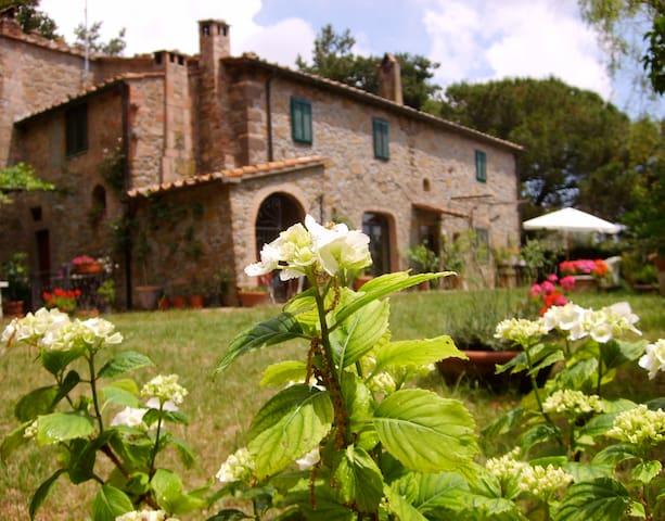 Casavacanze campagna con piscina - Montecatini Val di Cecina - Pis