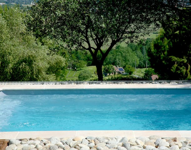 Small cottage with private pool & vineyard view