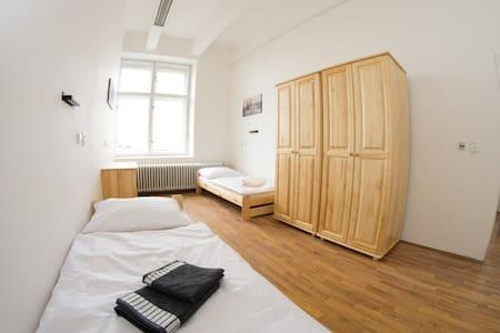 soukromý pokoj pro 2, centrum města - Apartmen