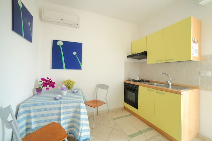 Two room Apartment (1st or 2 nd Floor)