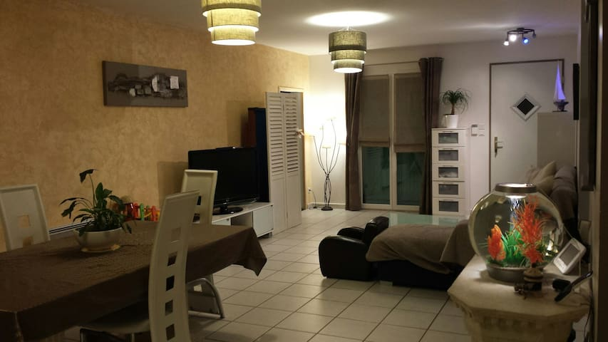 Villa familiale 20 min de lyon - La Boisse - Willa