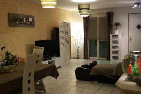 Villa familiale 20 min de lyon - La Boisse
