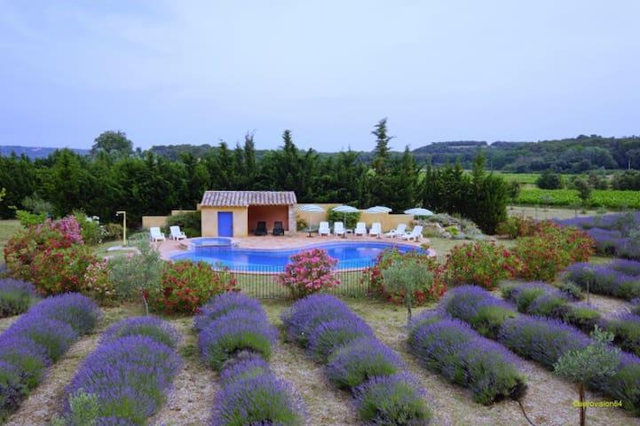 Tilleul dans mas avec piscine - Suze-la-Rousse - บ้าน