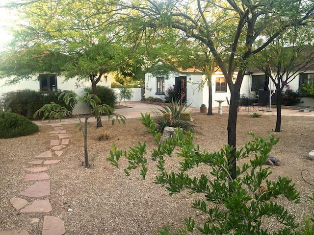 The White Dove - Tucson - Ev
