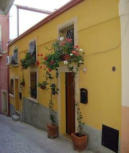 Nello storico centro della città  - Crotone - Ev