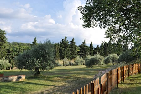 Agriturismo:large space outside,swimming pool,wifi