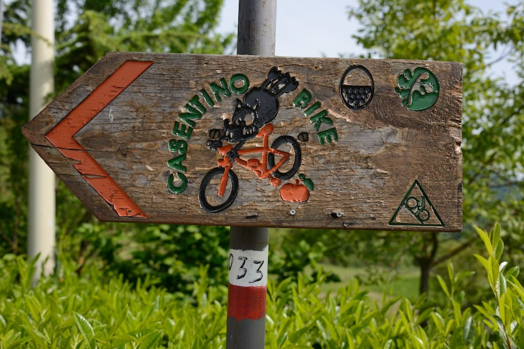 Sentieri Bike ed escursioni
