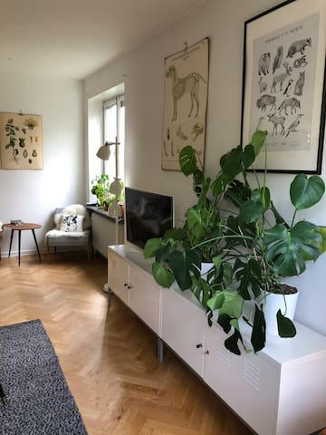 Cozy apartment on an island in central Stockholm.