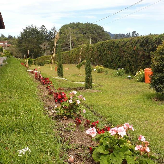 Hermosos Jardines al Natural!!