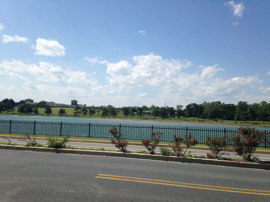 Cross the street to get to the biking and running path that wraps around the lake