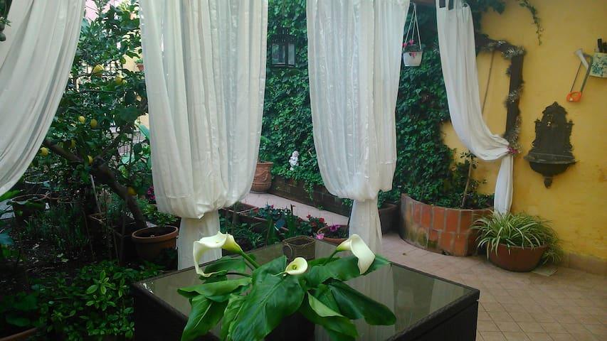 Casa Lola con giardino 37x2 persone - Roma - House