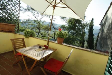 Tuscan hilltop paradise - la vista - San Martino Alla Palma