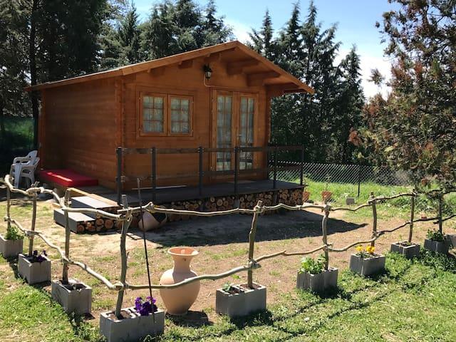 Cabaña de madera a orillas del Tiétar - Ramacastañas - Allotjament sostenible a la natura