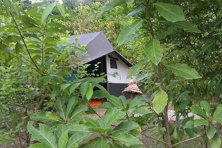 Camp Hornbill Corbett (Tent Stay)