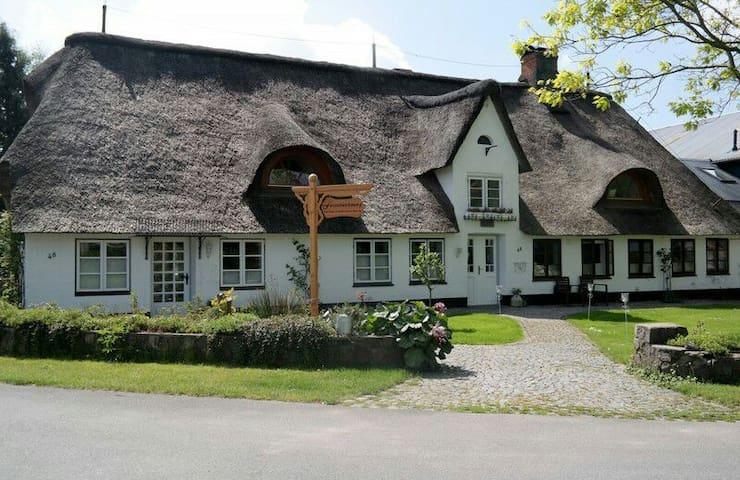 Meyn-Urlaub-unter-Reet - Meyn - House
