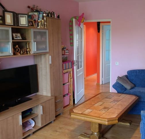 Lovely 2 room apartment in Old Town - Vilnius - Apartment