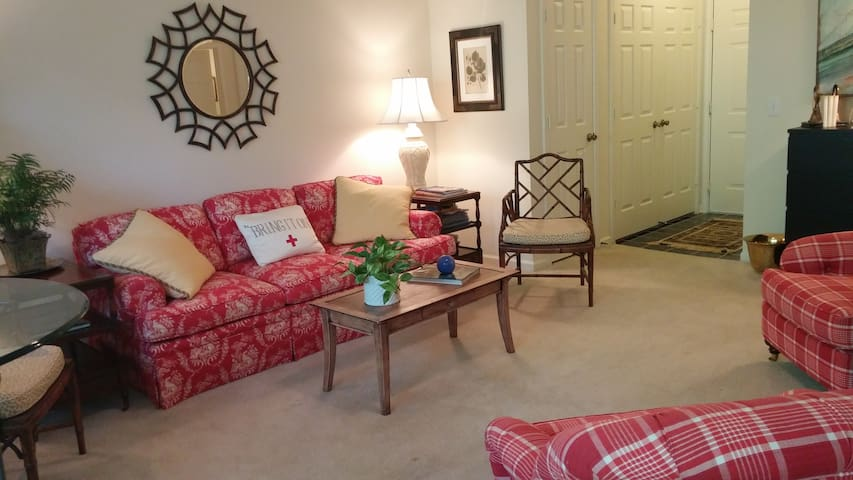 Comfy 1BR near WFU with amenities - Winston-Salem