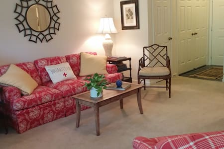 Comfy 1BR near WFU with amenities - Winston-Salem - Lägenhet