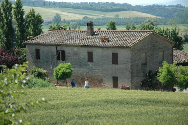 Podere per gruppi a Siena Toscana - Buonconvento - Bed & Breakfast