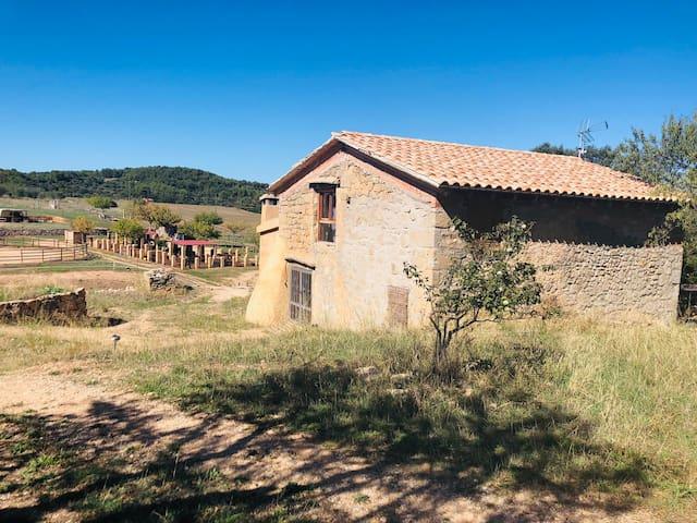 Casa rural con caballos