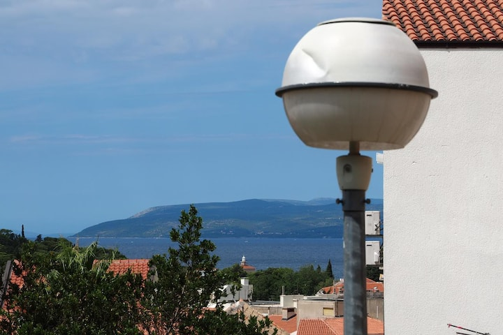 One bedroom apartment with balcony and sea view Makarska (A-15173-a)