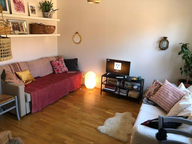 Clean and cosy studio apartment Telefonplan