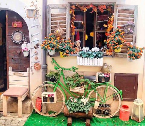 Casa al Lago - Bed and Bike
