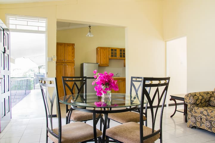 Awesome Liguanea Apt in the Middle of Everything - Kingston - Apartamento