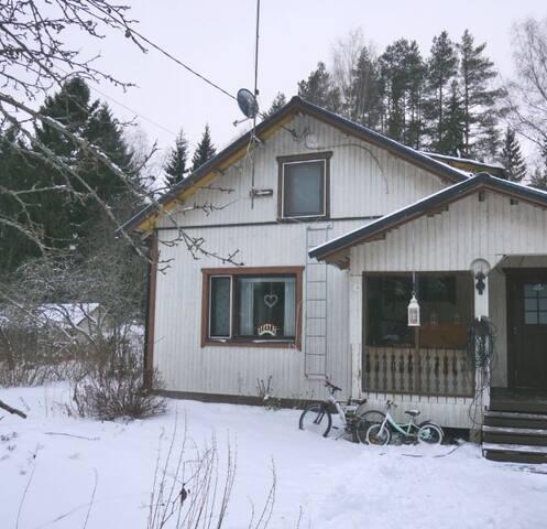 Уютный финский дом у озера