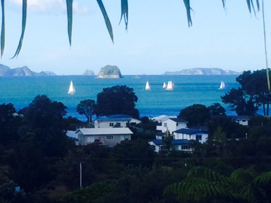 View of yachts sailing by from private deck.