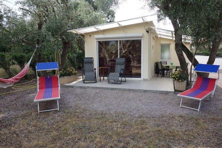 Petite maison dans oliveraie de 1000 m2 - Saint-André - Casa