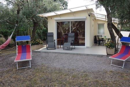 Petite maison dans oliveraie de 1000 m2 - Saint-André - Huis