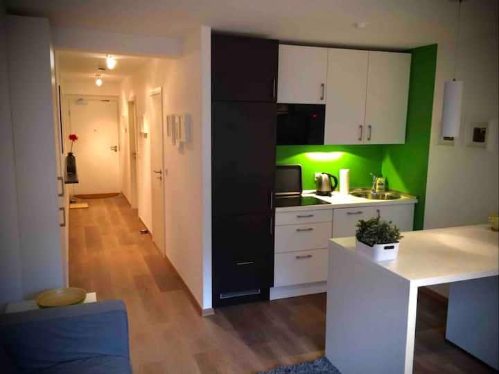 SN Aparts - Design Apartment in Zentrumsnähe