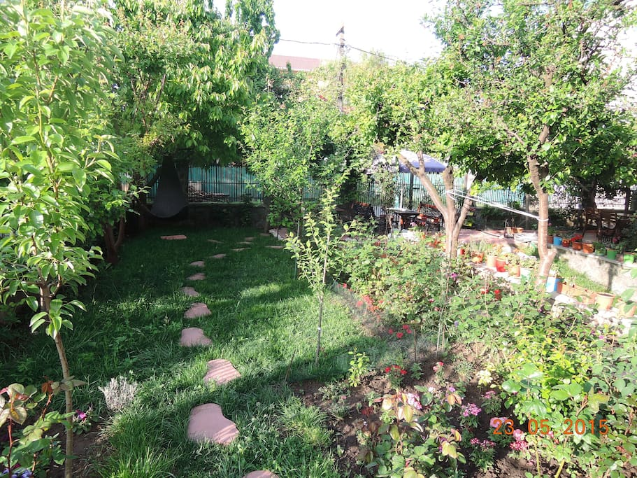 Garden View / May 23, 2015