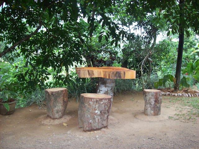 Ellamale Bungalow - Wattegama - Bungalow